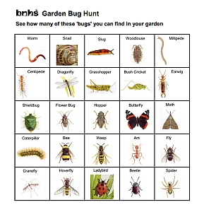 Garden Bug Chart graphic small